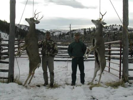 wilderness elk hunting in colorado