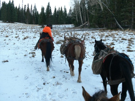Colorado elk guides deer hunting